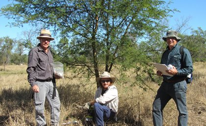 Professor Vic Galea, Paul Humphreys (Ecosure) and Peter Riikonen attending a trial site in Rockhampton.