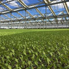 Horticulture facility